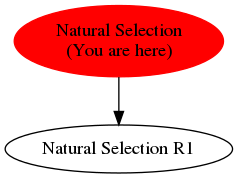 Graph of models related to 'Natural Selection'